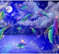 Dolphin Rainbow Chakras