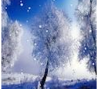 Fresh Snow - Cleansing Reiki