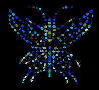 Aurora Butterfly of Peace Empowerment