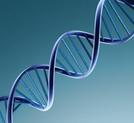 DNA Healing Reiki
