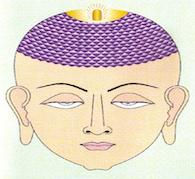 Head Chakra Flushes