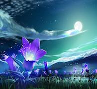 Magickal Flowers